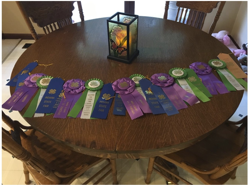 Fair Ribbons of Ross Reeder - genealogy project